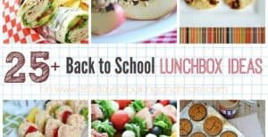 25+ Back to School Lunch Box Ideas - send the kids off to school this year with fun ideas for lunch that you know they'll enjoy AND eat!