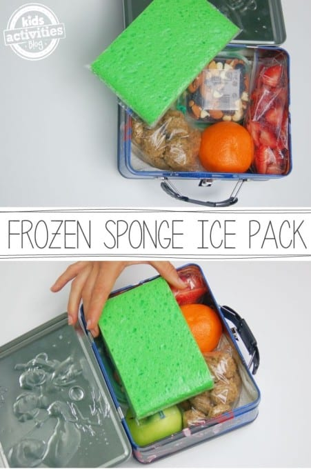 Frozen Sponge Ice Pack