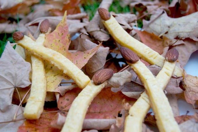 The perfect Halloween appetizer - cheddar cheese witch's fingers with almonds for the fingernails. SPOOKY, but fun!