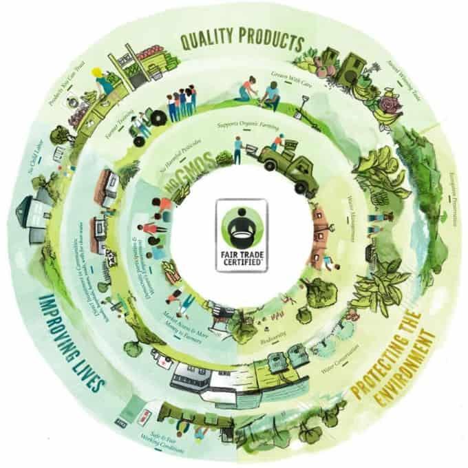 Fair-Trade-Graphic