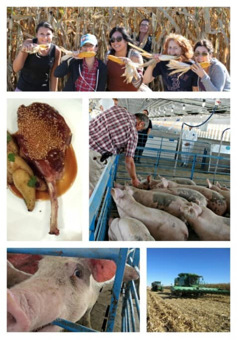 Pork Tour '15 - Brenneman Farm