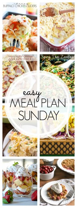 With Easy Meal Plan Sunday {Week 56}, these six meals, two desserts and a breakfast recipe will help you remove the guesswork from this week's meal planning. Enjoy!