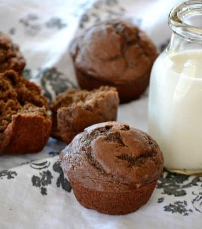 Chocolate Banana Muffins - when chocolate collides with banana, the perfect morning muffin is created. It's one even a monkey would love!