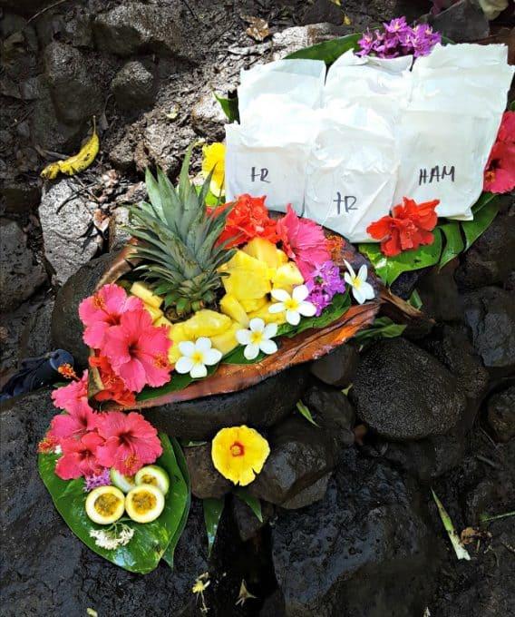 Kauai: Where to Stay and What to Do. Rainbow Kayak Adventure Tours - Kauai, HI Ask for Thomas