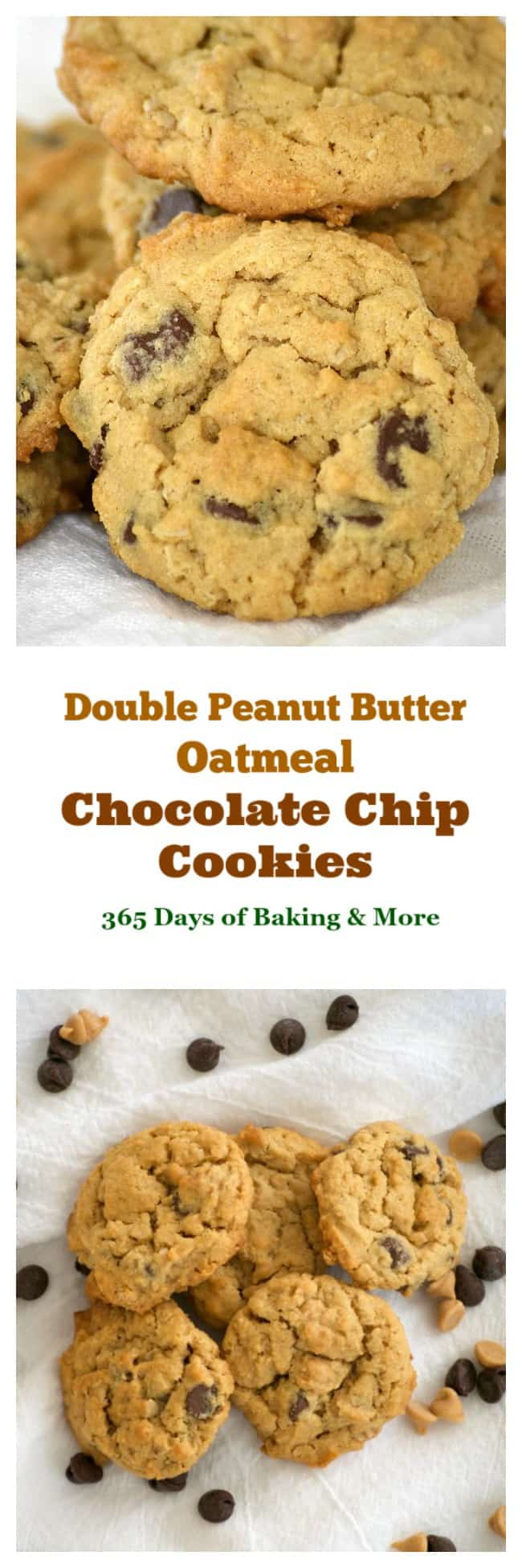 These Double Peanut Butter Oatmeal Chocolate Chip Cookies are bursting with peanut butter flavor and just a hint of chocolate. The perfect midnight snack!