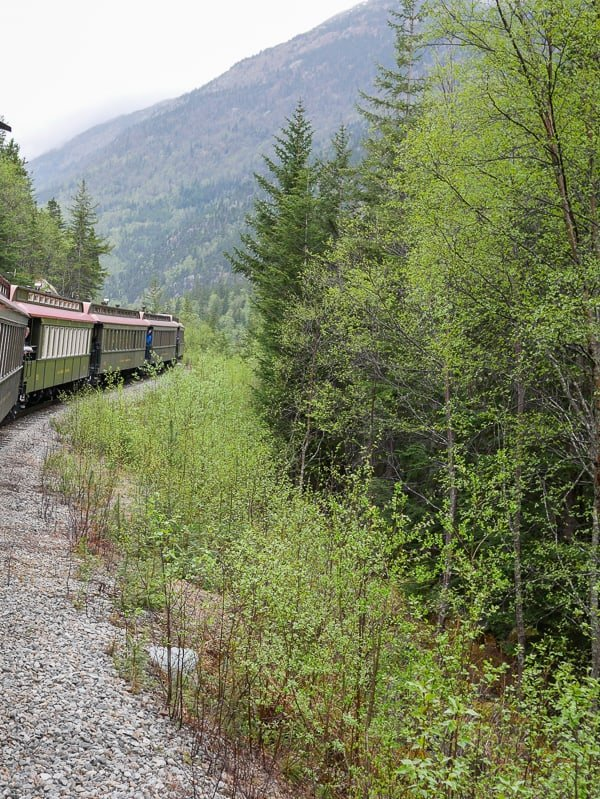 Going up the mountain on the White Pass Scenic Railway tour in Skagway, Alaska.