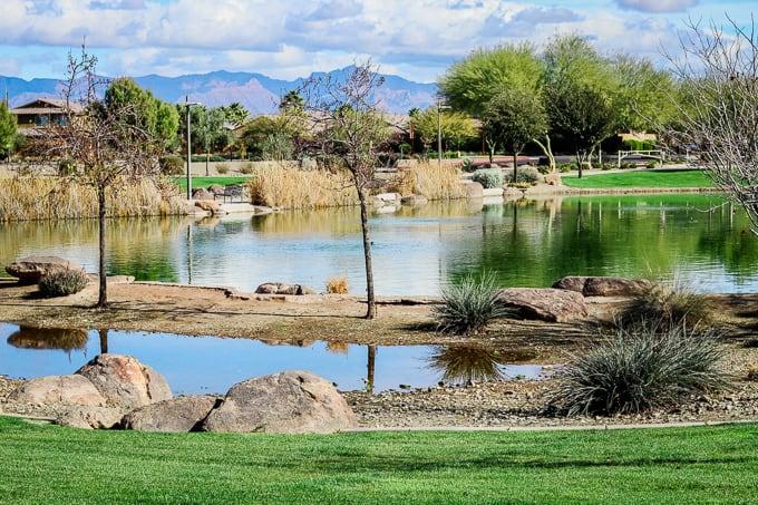 Park view from Steadfast Farm, Mesa, AZ.