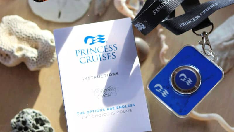 The Princess Ocean Medallion and instructions.