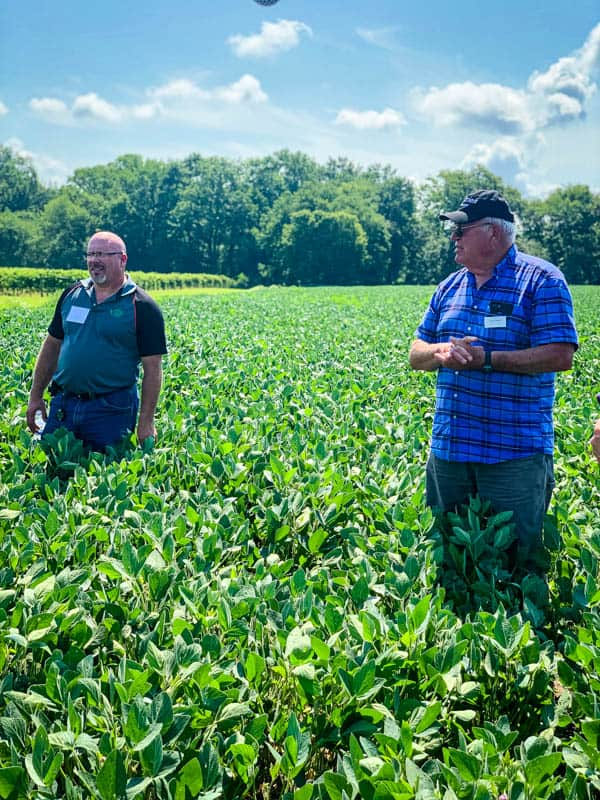William and Joe Layton of Lazy Day Farms in their soybean field.