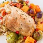A plate of cooked chicken and vegetables.